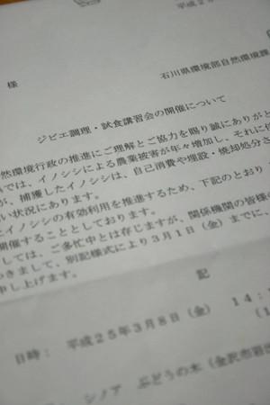 Img_5427x